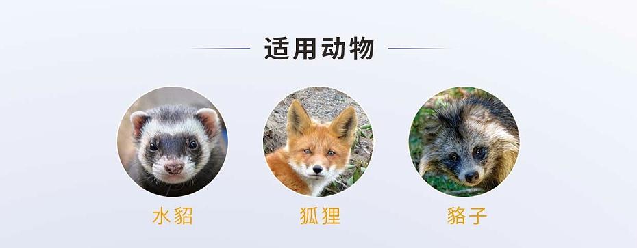 硫酸新霉素可溶性粉-貂狐貉专用
