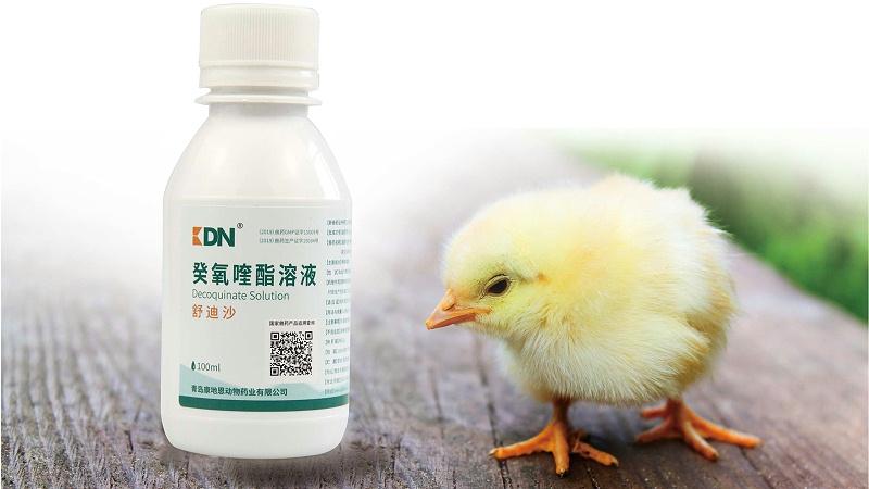 癸氧喹酯溶液在动物球虫病防治上的应用