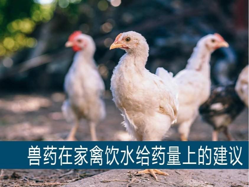 【康地恩兽药百科】部分兽药在家禽上 按公斤体重饮水给药量的建议