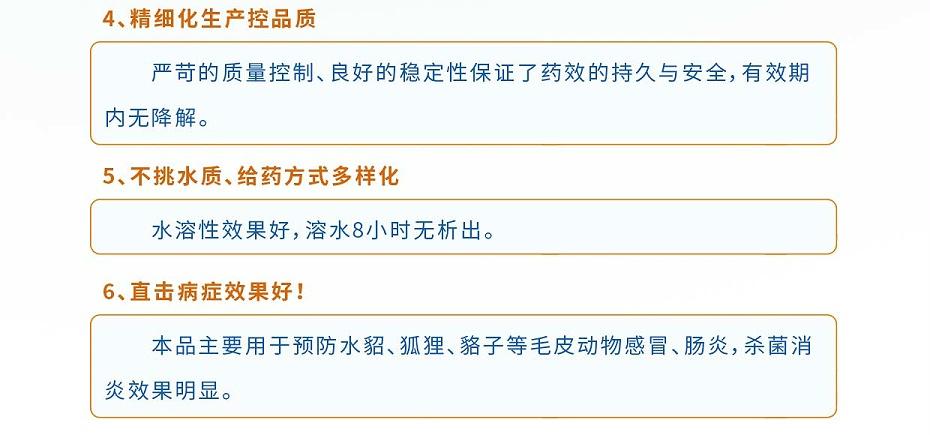貂狐貉感冒、消炎杀菌、乳房炎药厂家-青岛康地恩-4