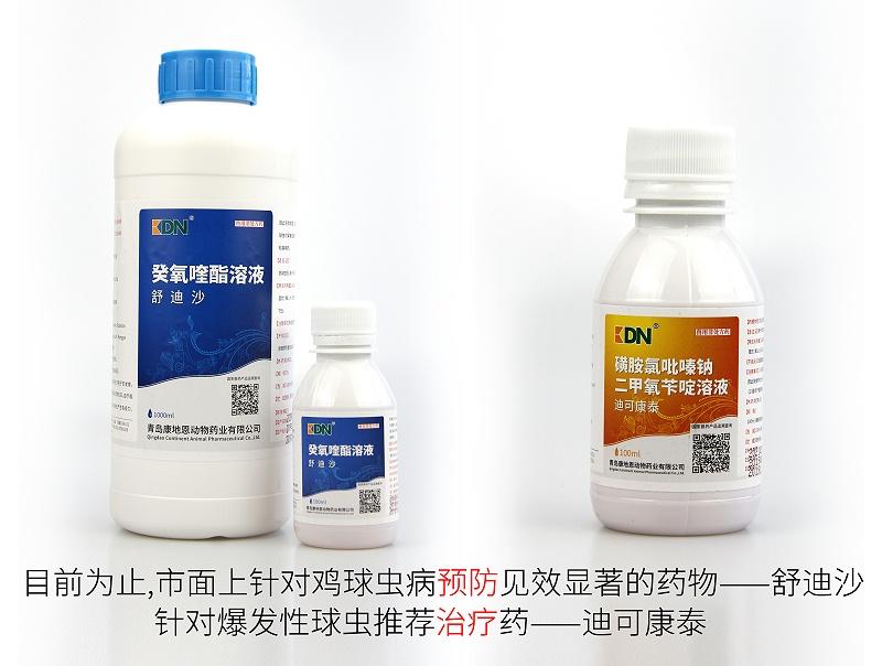 鸡球虫病预防推荐用药——舒迪沙。爆发性球虫治疗药——迪可康泰。