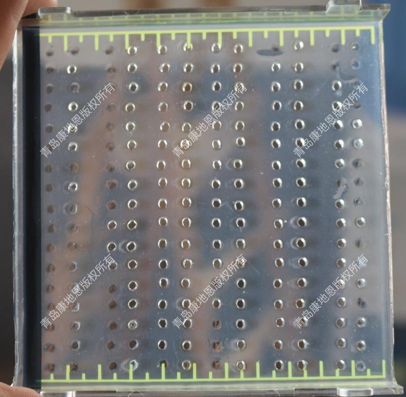 对流免疫电泳检测结果图(青岛康地恩提供专业的阿留申检测实验室建设和技术支持)