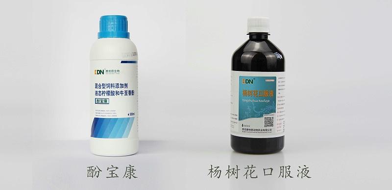 家禽腺肌胃炎的防治方案【青岛康地恩】