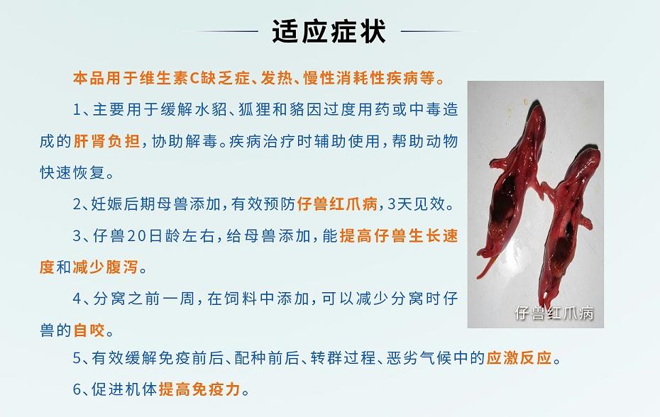 维生素C可溶性粉-预防仔兽红爪病,减少应激产品厂家批发-青岛康地恩2