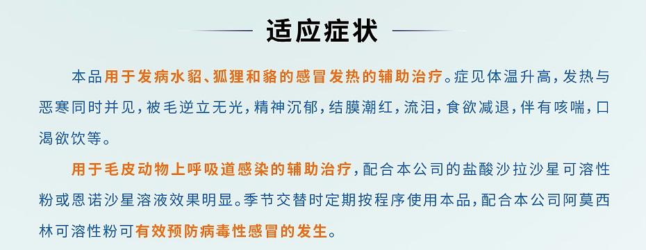 貂狐貉兔毛皮动物抗病毒药双黄连口服液青岛康地恩厂家直销批发零售2