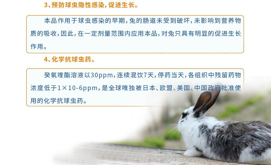 兔球虫用药国家四类新兽药癸氧喹酯溶液青岛康地恩厂家批发3