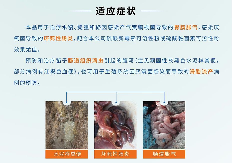 貂狐貉胃肠胀气滑胎流产滴虫腹泻用药地美硝唑厂家批发-青岛康地恩2